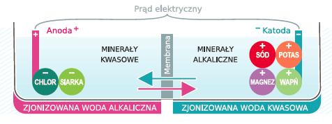 Schemat opis elektrolizy Jonizator wody Aquator Silver Nowy model